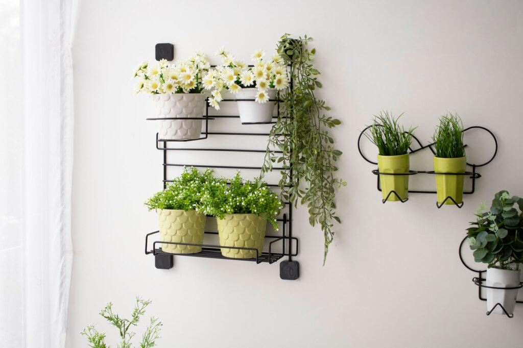 Jardim vertical aramado para parede kit 1